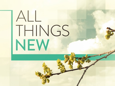 all_things_new_std_t_nv
